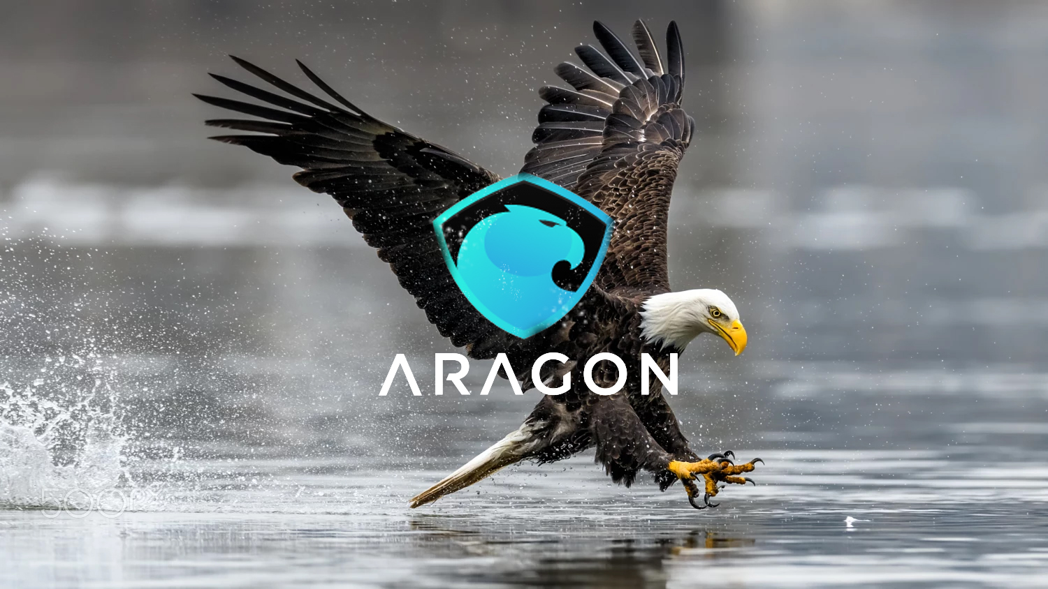aragon chatrooms Vip exclusive: my visitors don't miss out on visitors who come by to check you out as a vip, you can start making valuable connections today become a vip.